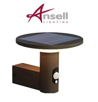 Solar Powered LED PIR Wall Light 210 Lumen